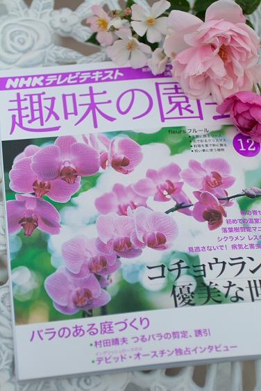 「趣味の園芸」12月号