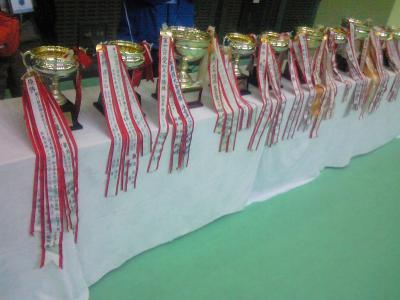 第18回全国小学生バドミントン選手権大会
