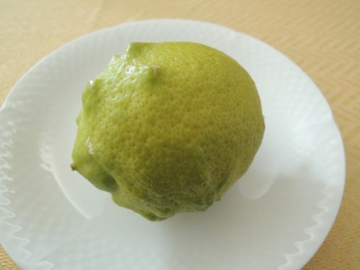 2月11日 レモン
