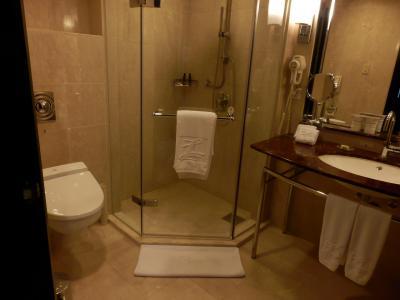 台南大億麗緻酒店12