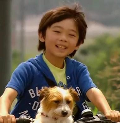 ぼくとママの黄色い自転車 武井証02