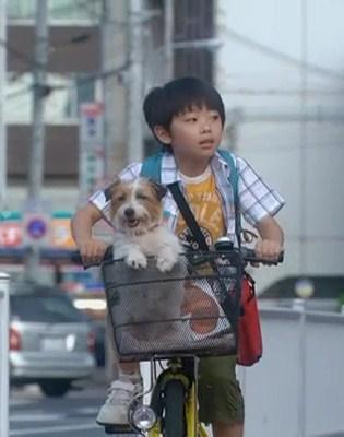 ぼくとママの黄色い自転車 武井証23