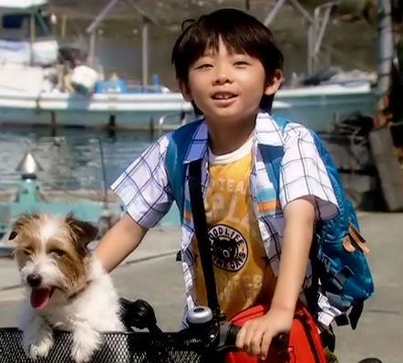 ぼくとママの黄色い自転車 武井証44.1