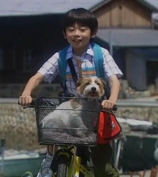 ぼくとママの黄色い自転車 武井証44