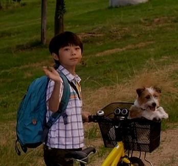 ぼくとママの黄色い自転車 武井証71