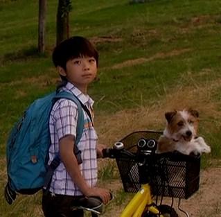 ぼくとママの黄色い自転車 武井証70