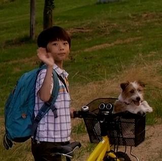 ぼくとママの黄色い自転車 武井証72