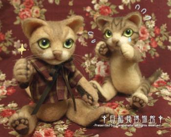 cat0915b.jpg