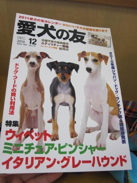 愛犬の友 12月号