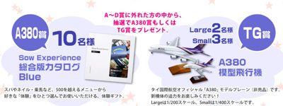 A380飛んでもらえるキャンペーン ダブルチャンス