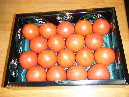 フルーツトマト5