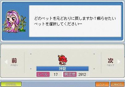 Maple091228_124907.jpg