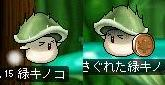 Maple100105_160039.jpg