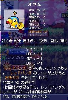 Maple100210_175729.jpg