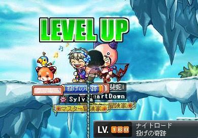 Maple100328_155556.jpg