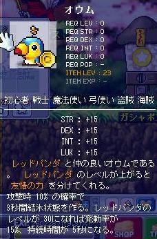 Maple100424_210815.jpg