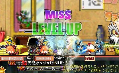 Maple101021_214836.jpg