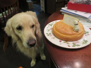 ケーキちらり