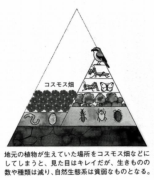 2013020900003.jpg
