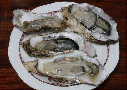 091219 牡蠣on the half shell  14