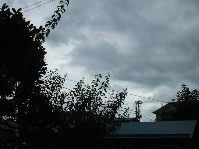 100812 台風が来た Web