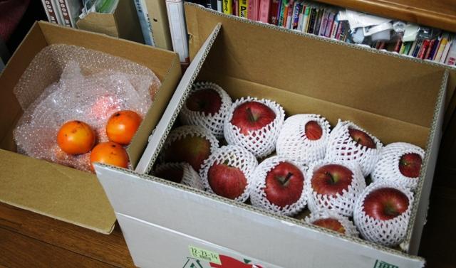 101127 柿とりんご W