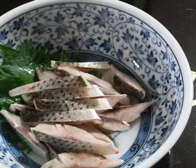 IMG_4492 コノシロ酢締め w