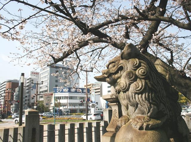 IMG_4841 白神社の狛犬 W