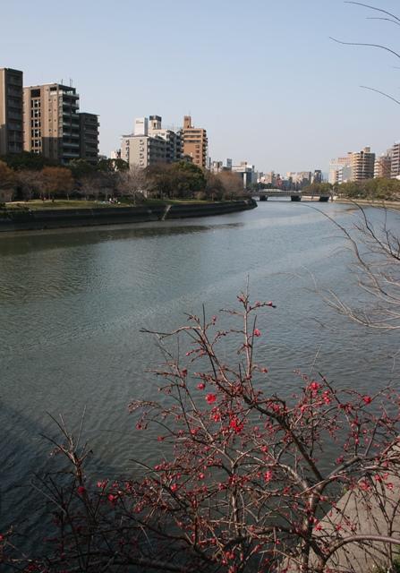 IMG_4877 京橋川鶴見橋東詰から対岸を W