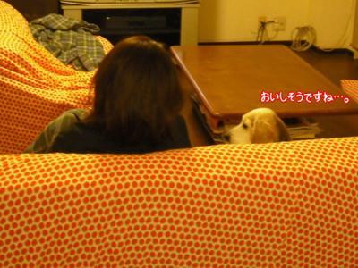 002_20100127194722.jpg