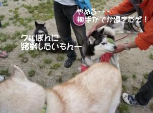 2011 6月愛ハス 065a