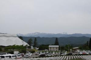 2011 6月ひるがの高原 024