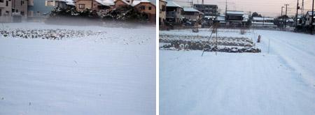 雪野原の畑