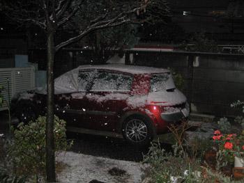 雪で白くなった愛車