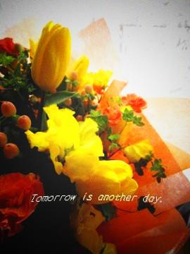 2011.3.11 花束