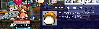 20100413きのこきーほるだー(