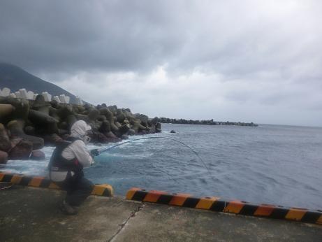 2013.1.31_八丈島 115