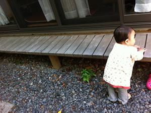 2011_4_30_1.jpg
