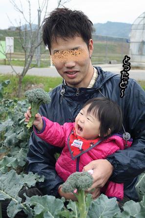 2009 11 22 みかん狩り2 blog07のコピー