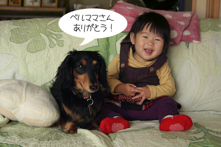 2009 11 23 みかん狩り blog01のコピー