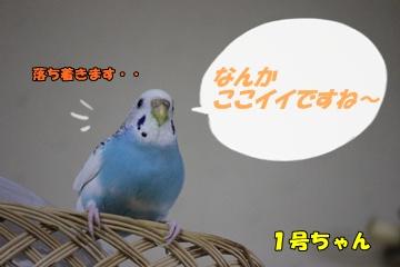 IMG240413-7.jpg
