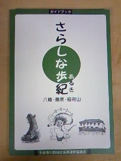 sarasinaaruki1.jpg