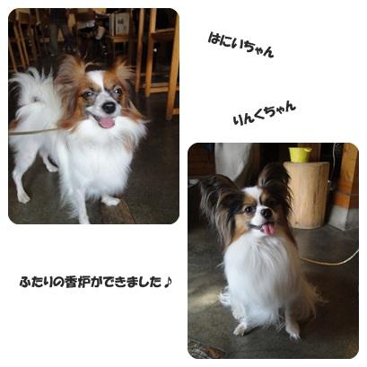 2013-10-kouro.jpg