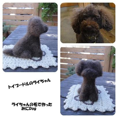 2013-10-wako.jpg
