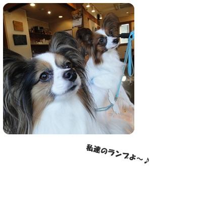 2013-11-taibokub.jpg