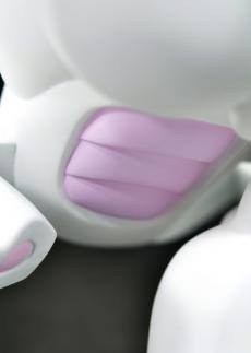 paw-milk-onsale-33.jpg