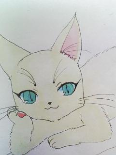 チェシャ猫空幻