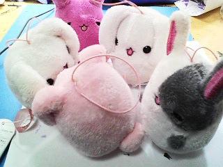 呑気に戯れるウサギ達