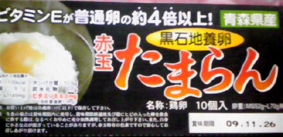 20091112e.jpg