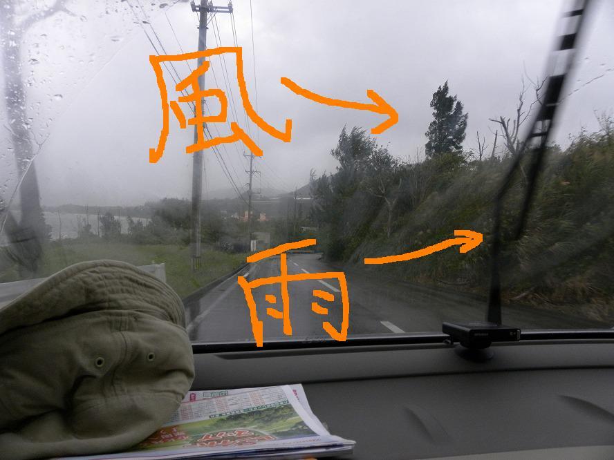 雨1 2009.11.17